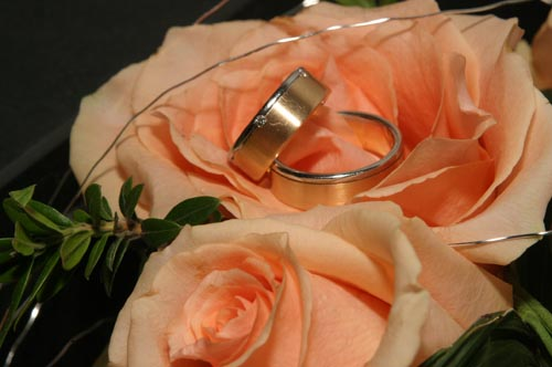 Weddingdance Ringe